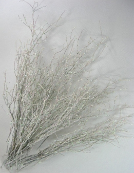 Huckleberry Willow Branches Sparkle White (20 Branches)