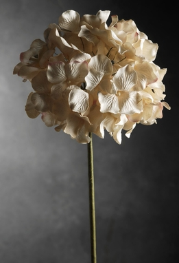 Artificial Hydrangeas Cream