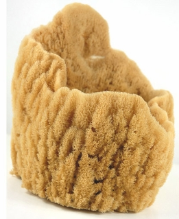 "Large Natural Mediterranean 9-11"" Vase Sponges"