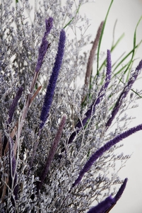 Caspia Bouquet Lavender Natural Preserved