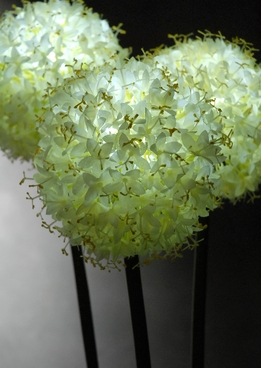 LED Allium Flower Lights (3 stems)