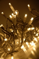 LED String Lights White Wire | Warm White