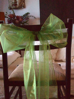 Light Green Organza Chair Sashes (Pack of 10)