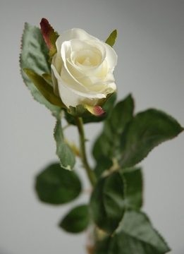 Long Stem Silk Roses Cream White (12 flowers)
