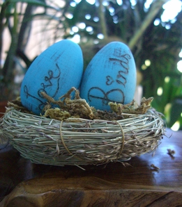 Love Birds Eggs & Nest with Moss 4in