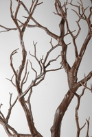 Manzanita Branches Brown 38.5 in. Artificial
