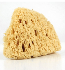 "Mediterranean 5"" Sea Wool Sponges"
