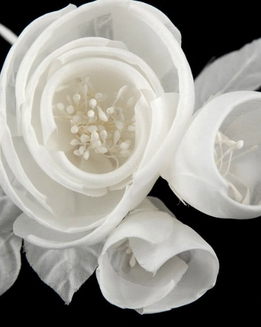 Millinery Flowers Starched & Rolled White Roses