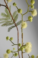Mimosa Blossom Branch Artificial