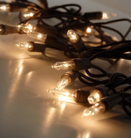 Mini String Lights Brown Wire 11.5 Ft | Clear