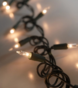 Mini String Lights Clear | Green Wire 32ft