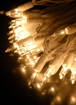 Mini String Lights White Wire 42 Ft