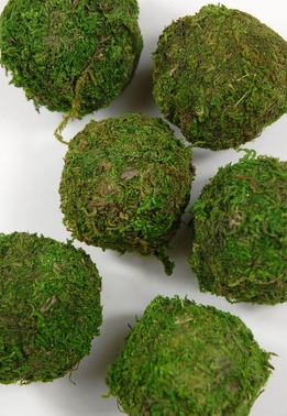 Moss Balls Natural 2in | Pack of 6