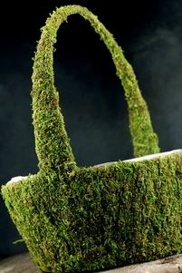 Moss Baskets Preserved Green 11x 14""