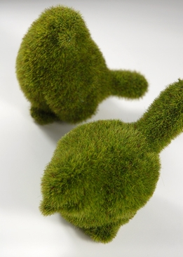 Moss Topiary Birds 5in (Set of 2)