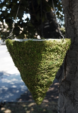 Moss Cones Hanging Baskets with Liners
