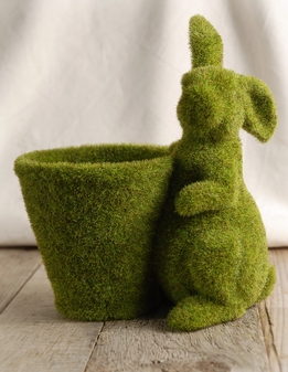 Moss Pot and Bunny