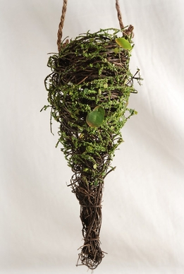 Moss Covered Grapevine Cones 9.5""