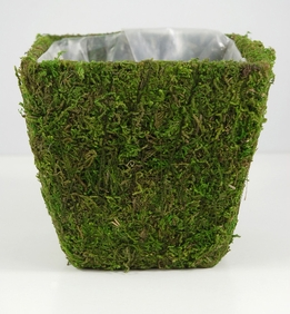 Moss Covered Pots Square