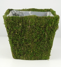 Moss Covered Pot w/Liner 6in