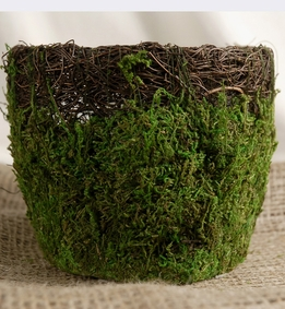 Moss Pots Wicker & Preserved Moss 6 in. Round Pots