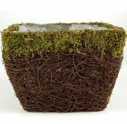 Wicker and Moss Pot with Liner 6in
