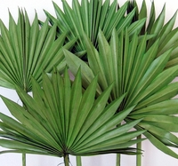 Natural and Artificial Palms