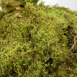 Natural Dried Moss (2.5 cubic feet) 7 lbs
