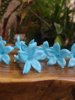 "Natural Preserved Blue 2.25"" Jasmine Flowers (12 flowers)"