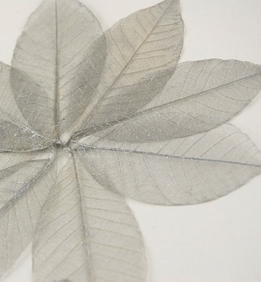 "Natural Silver Glitter 3"" Skeleton Leaves (pkg/ 10 leaves)"