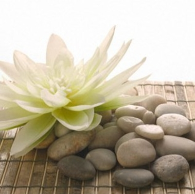 Natural Stones and artificial rocks
