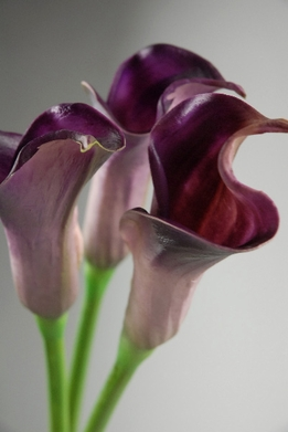 Natural Touch Flowers Purple Calla Lilies
