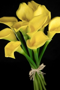 Artificial Calla Lily Bouquet Yellow | 12 flowers