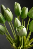 Natural Touch Green Tulips (12 flowers)