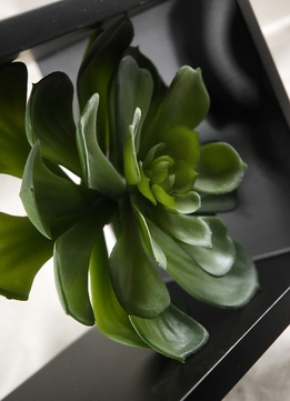 Artificial Succulent 6in