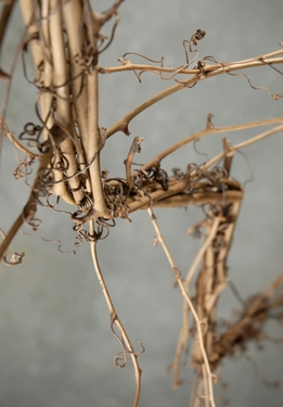Natural Wild Vine Garland 44 in.