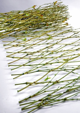 Natural Woven Bamboo Runner with Leaves (stretches up to 6')