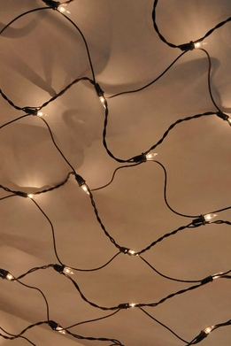 Net lights 4 ft x 6 ft with 150 Clear lights Brown cord