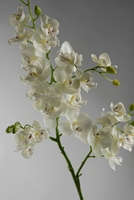"Orchid Branch 28"" Cream Natural Touch"