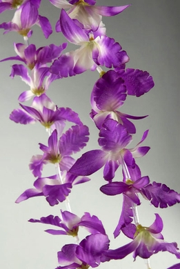 Lei Purple & White Orchid