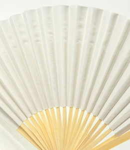 Paper Fans 10in White (Pack of 6)