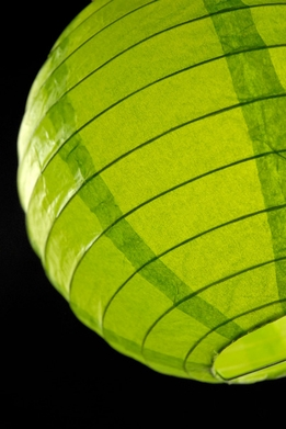 Paper Lanterns 8 in.Green Chartreuse Round Paper Lanterns