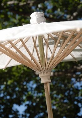 Parasols White Scalloped 32 in. Parasols