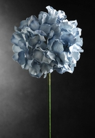 Parchment Paper Hydrangeas Light Blue