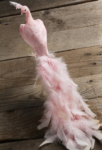 "Peacocks Pink 17"" Natural Feathers"