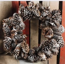 Pine Cone Wreaths Natural Sugar Pine Cone Frosted 22""