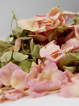 Pink Natural Rose Petals & Green Hydrangea Freeze Dried (5 cups/pkg)
