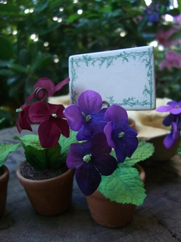 Place Card Holders Violets in a Flower Pot (6 pieces)