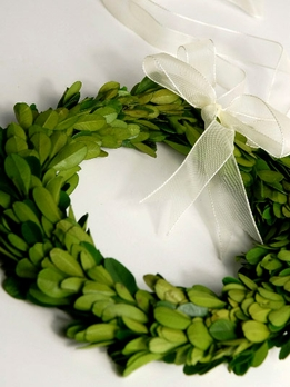 "Preserved 8"" Boxwood Wreath"