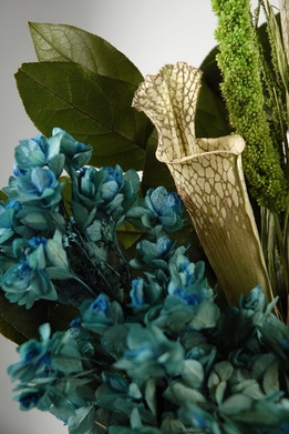 "Preserved Flowers 32"" Teal Blue Bouquet"